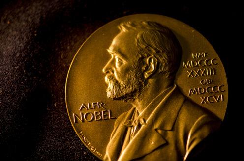 Nobel Medal (30)