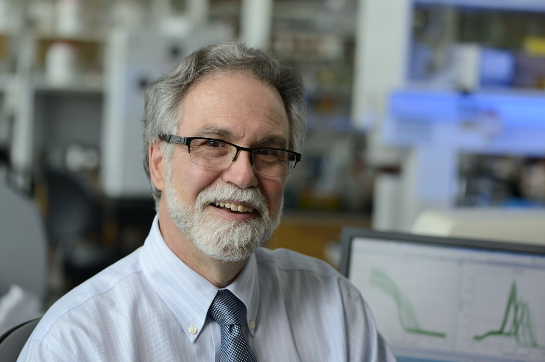 Gregg L. Semenza in his laboratory.