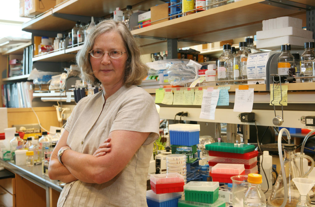 Elizabeth Blackburn in her lab at the University of California, San Francisco