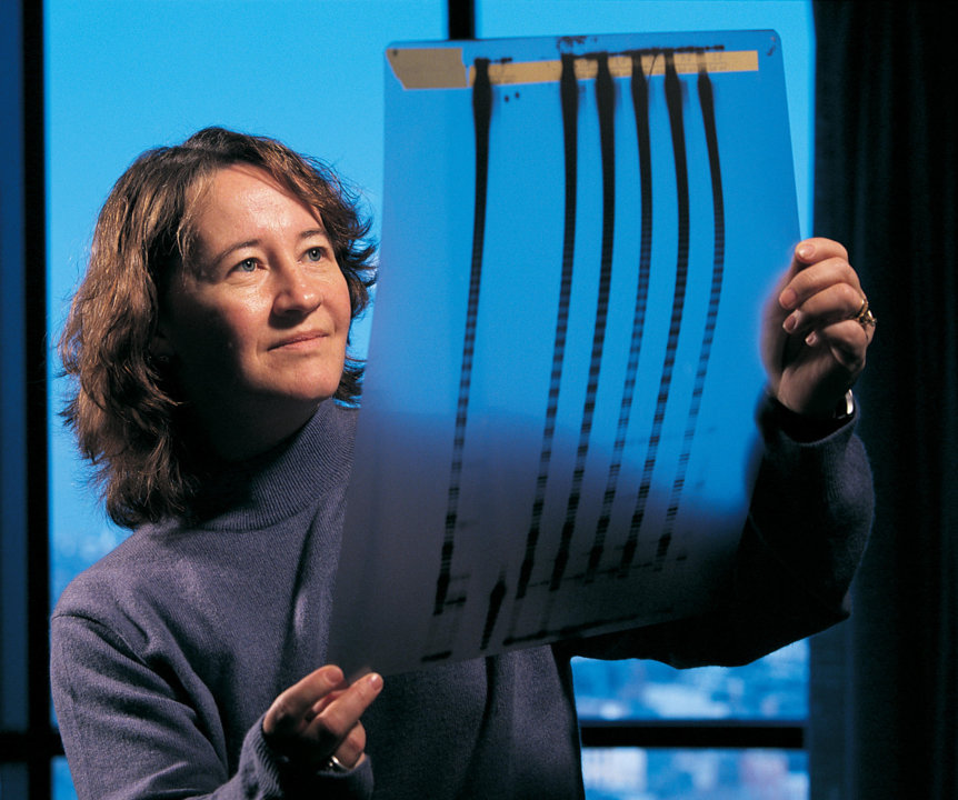 Carol W. Greider studies evidence of telomerase