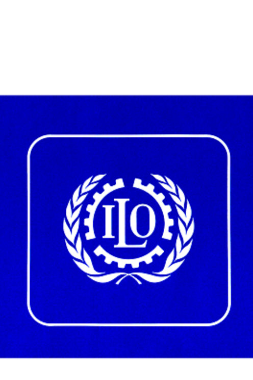 International Labour Organization (I.L.O.)