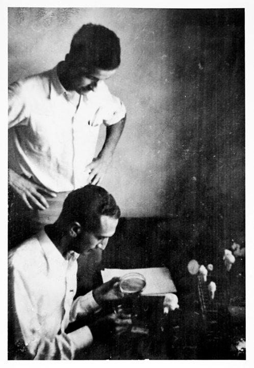 Max Delbrück and Salvador Luria