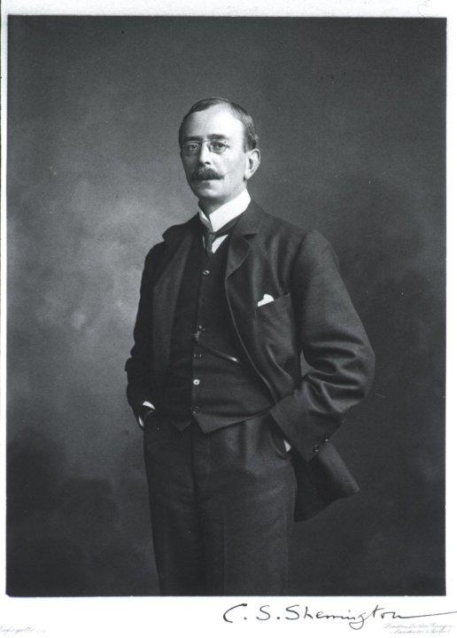 Portrait of Charles S. Sherrington