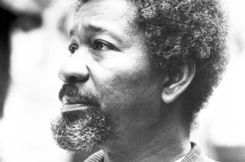 Image result for Wole soyinka's   son letter