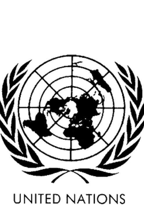 United Nations Peacekeeping Forces