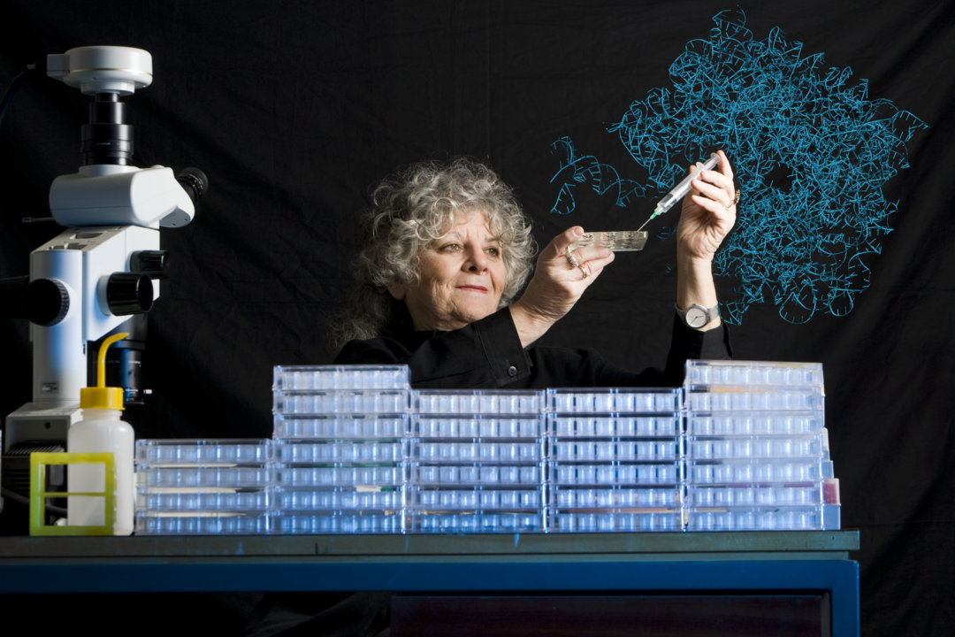 Ada Yonath with dishes used for crystallization experiments