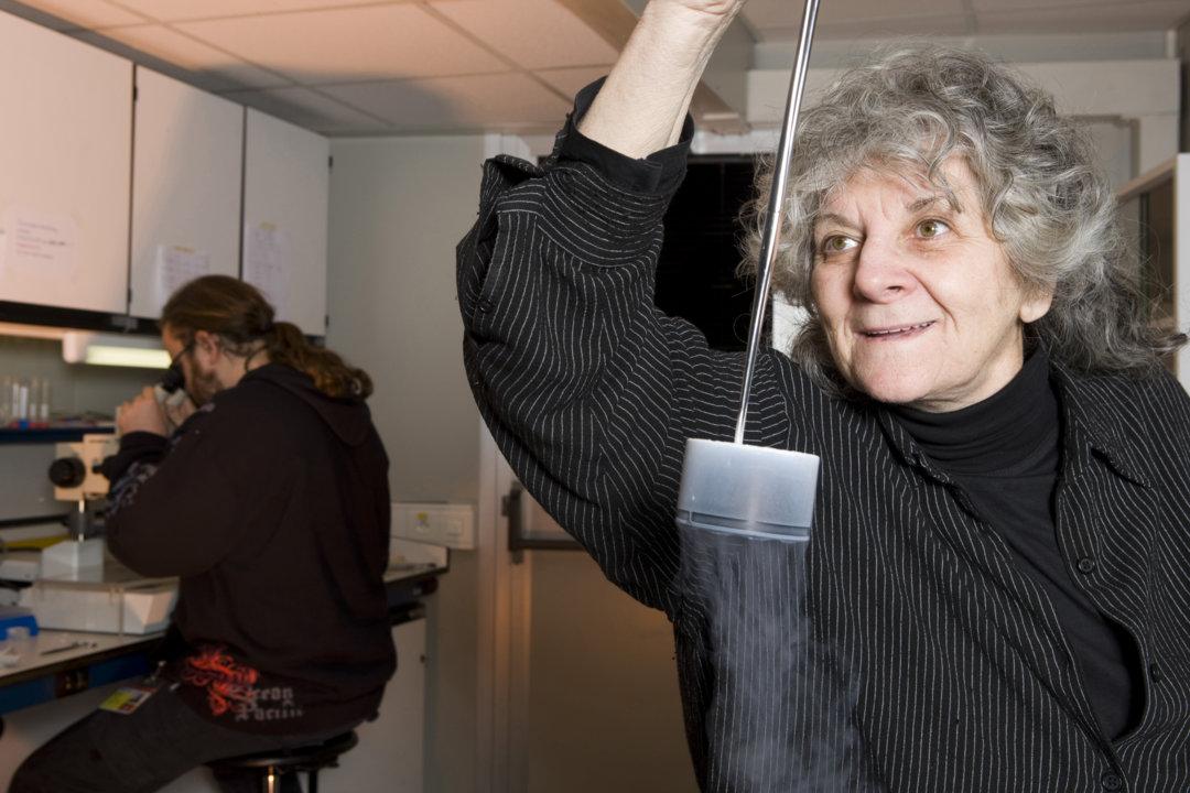 Professor Ada Yonath preparing frozen crystals