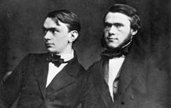 Alfred and Ludwig