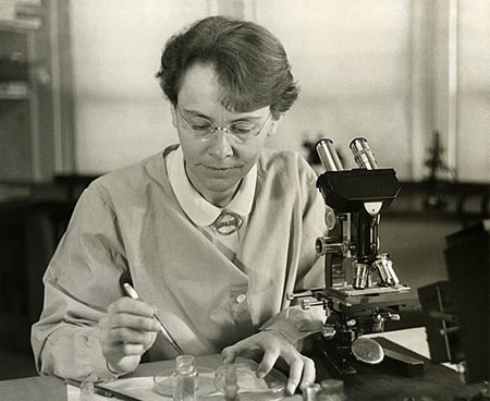 Barbara McClintock shown in her laboratory at Cold Spring Harbor. Source: Smithsonian Institution/Science Service; Restored by Adam Cuerden, via Wikimedia Commons