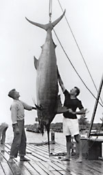 Ernest Hemingway with a big fish.