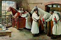 Historical engraving showing how the medicinal serum was obtained from immunized horses
