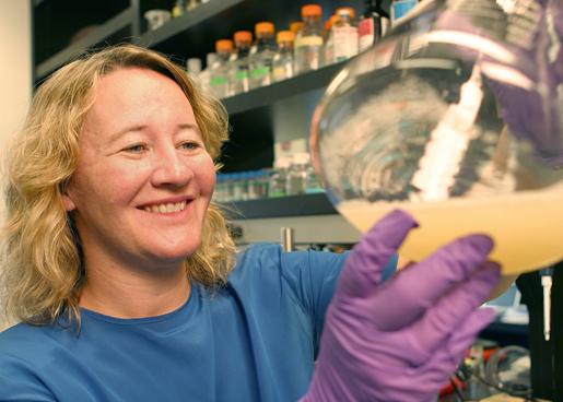 Carol W. Greider in her laboratory
