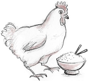 hen and bowl of rice