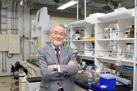 Yoshinori Ohsumi in his laboratory. Copyright Tokyo Institute of Technology
