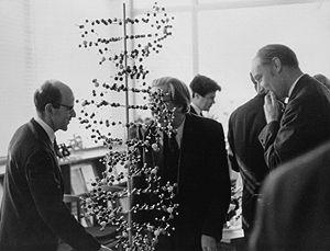 Perutz, Bernal and Crick
