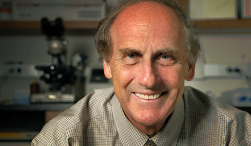 Professor Ralph M. Steinman, 2011 Nobel Laureate in Physiology or Medicine, in his laboratory