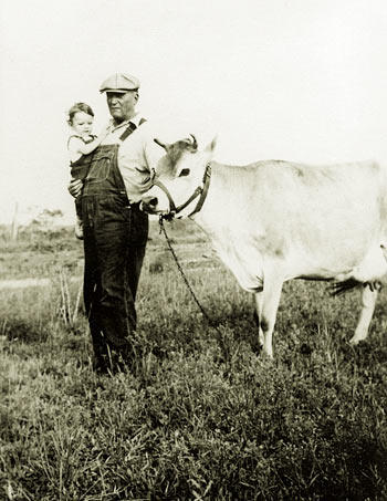 I am in the arms of my grandfather standing next to his cow