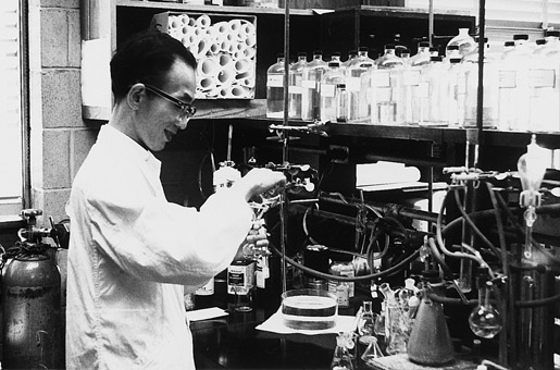 Working at Professor H. C. Brown's Lab., Purdue Univ., August 1964