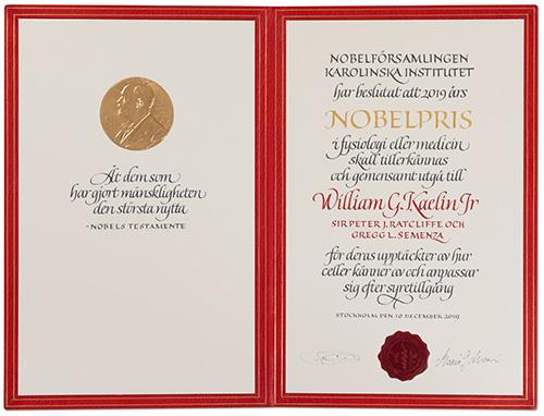 William G. Kaelin Jr - Nobel diploma