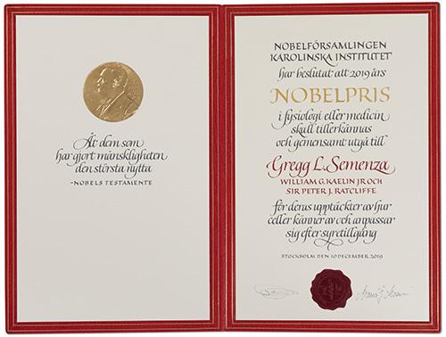 Gregg L. Semenza - Nobel Diploma